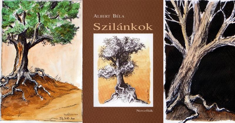 Könyvborító és illusztrációk